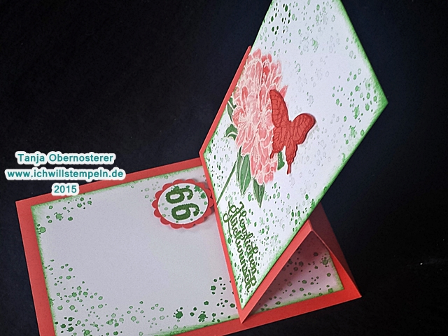 Geburtstagskarte - 66 technik.jpg