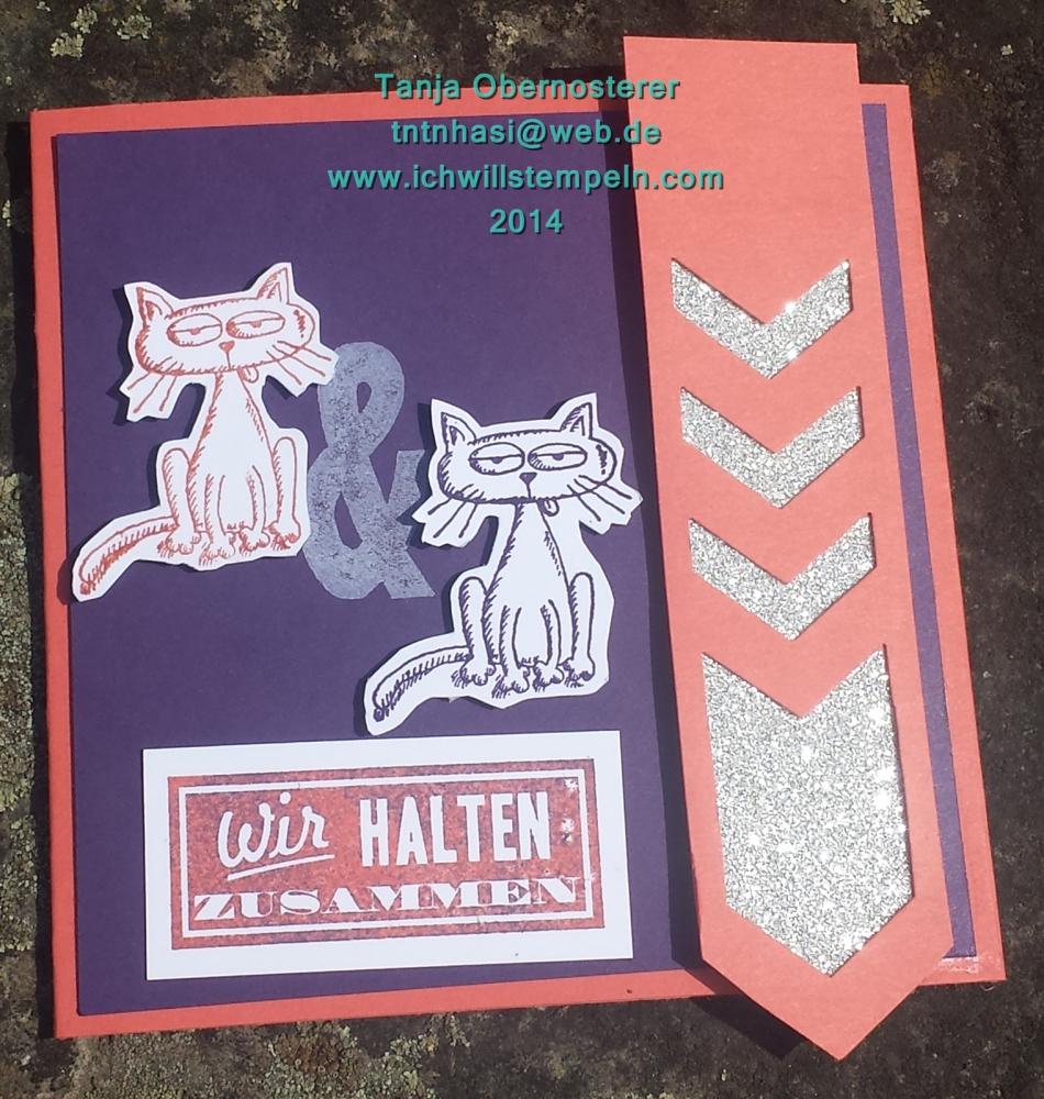 Glitzer Katzenkarte Zusammenhalt