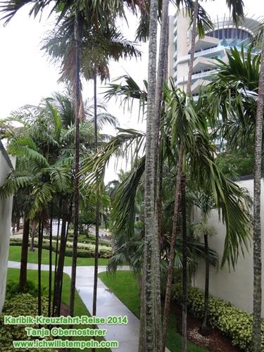 Fort Lauderdale - Hyatt-3- Karibik