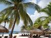 Mexico Palmen am Strand