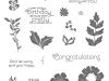 Stempelset-Alles Wunderbare ENGLISCH