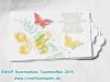 Sommerfest SWAP 30.jpg